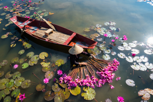 Mercati di frontiera, Asia terreno fertile