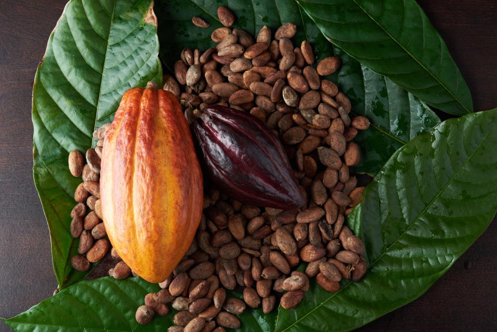 Cacao, a Pasqua i prezzi non fanno sorprese