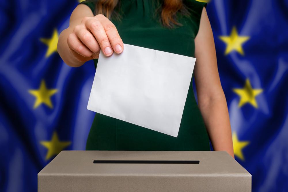 Elezioni europee cruciali per gestire la prossima fase di ribasso