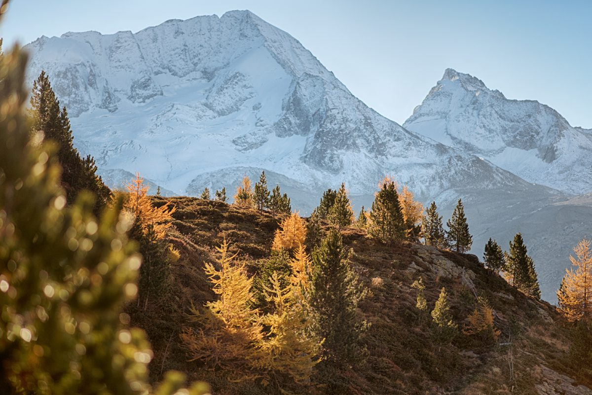Alpin Royal, resort luxury tra le vette della Valle Aurina