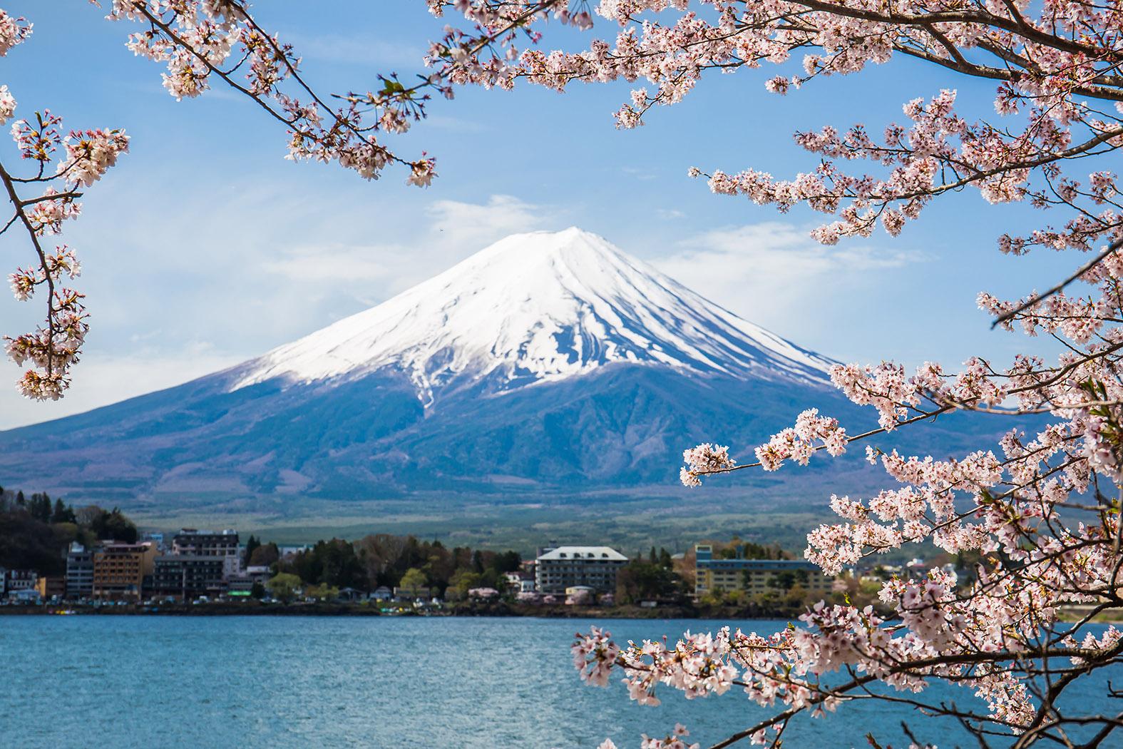 """Comgest: """"Ottimisti su storie meno conosciute in Giappone"""""""