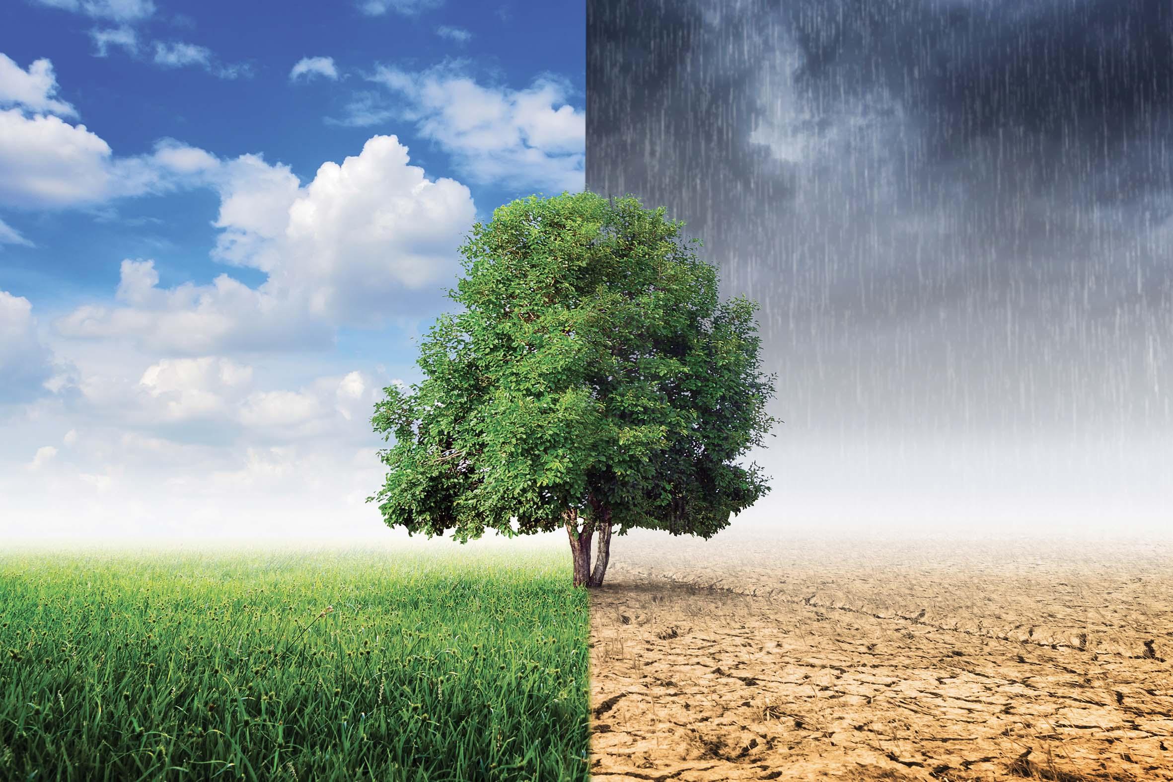 Il ruolo del cambiamento climatico nelle nomine dei membri del CdA