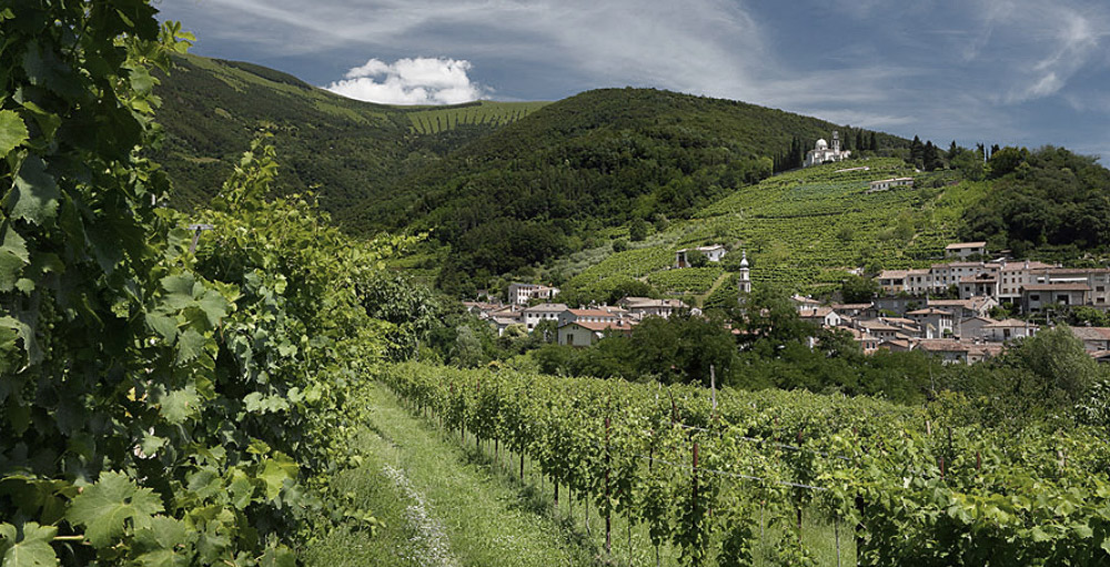 Montelvini presenta il Manzoni Bianco 2018