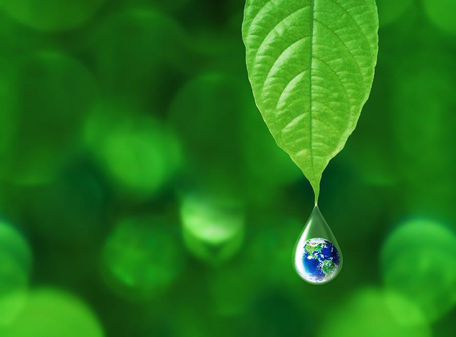 ConsulenTia, record per i temi sostenibilità
