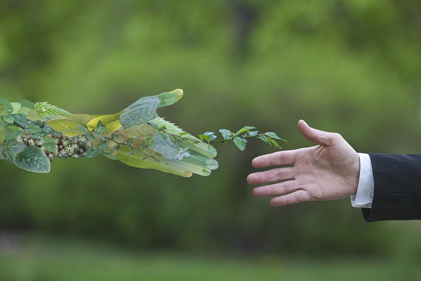 Sostenibilità: con Biden si profila una spinta green