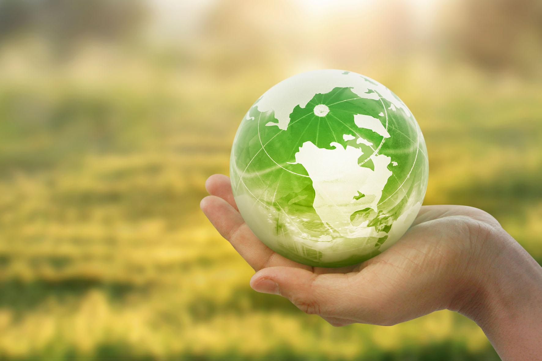 Investimenti sostenibili: la biodiversità al centro della scena