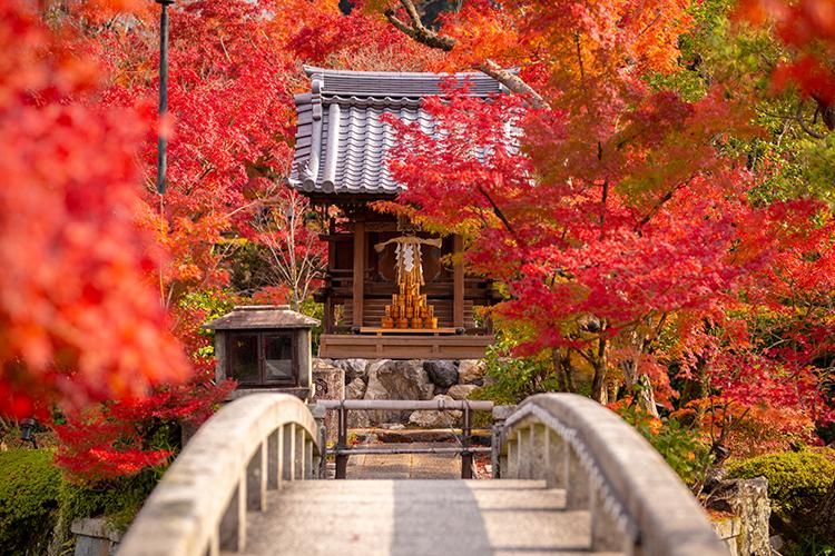 Giappone meglio di altri Paesi industrializzati nella ripresa