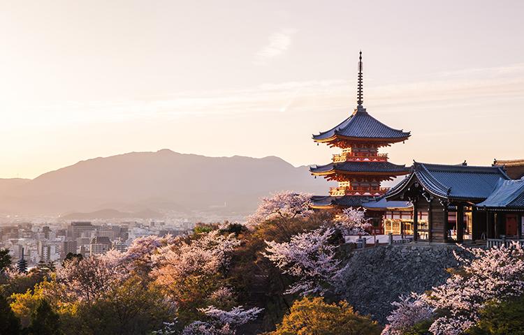 Giappone interessante per natura ciclica del mercato