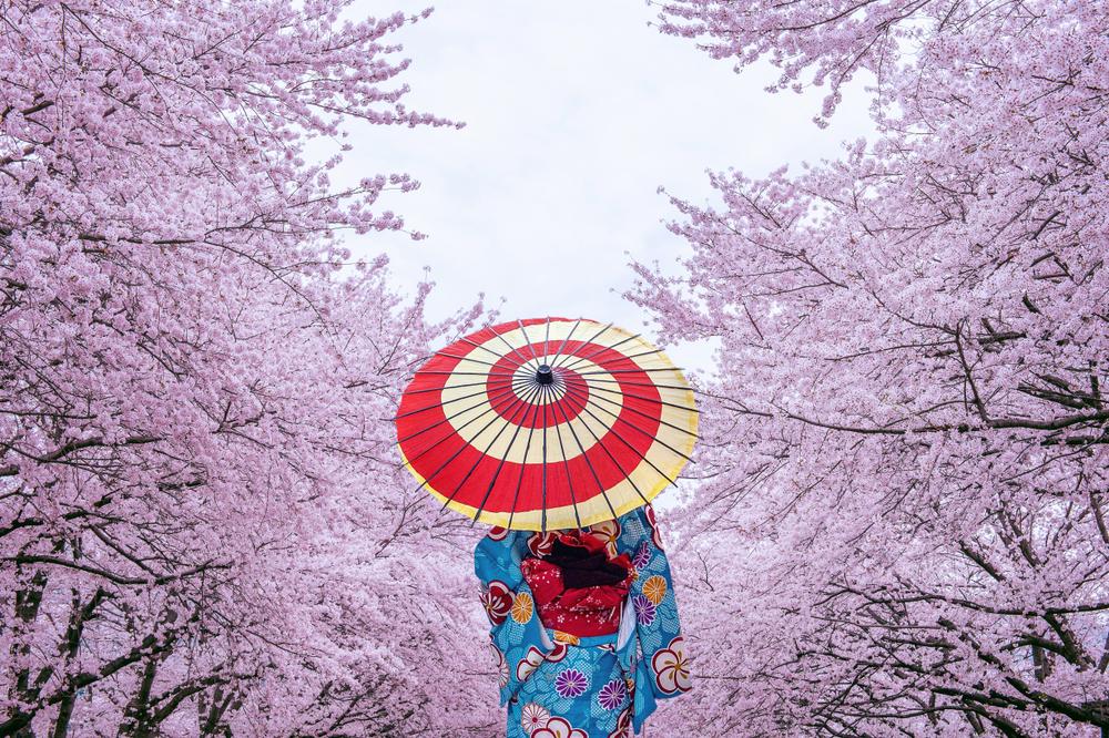 Giappone attraente: EPS aziende crescono più del mercato