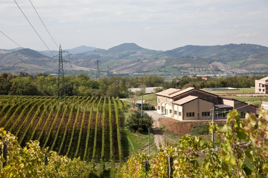 Monte delle Vigne, colli di Parma DOC