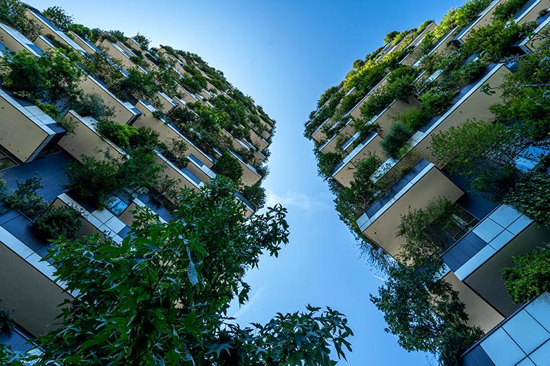 Green bond: il primo Btp verde italiano
