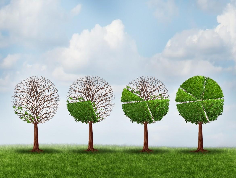 Investimenti sostenibili, il 47% degli investitori tiene conto dei criteri Esg