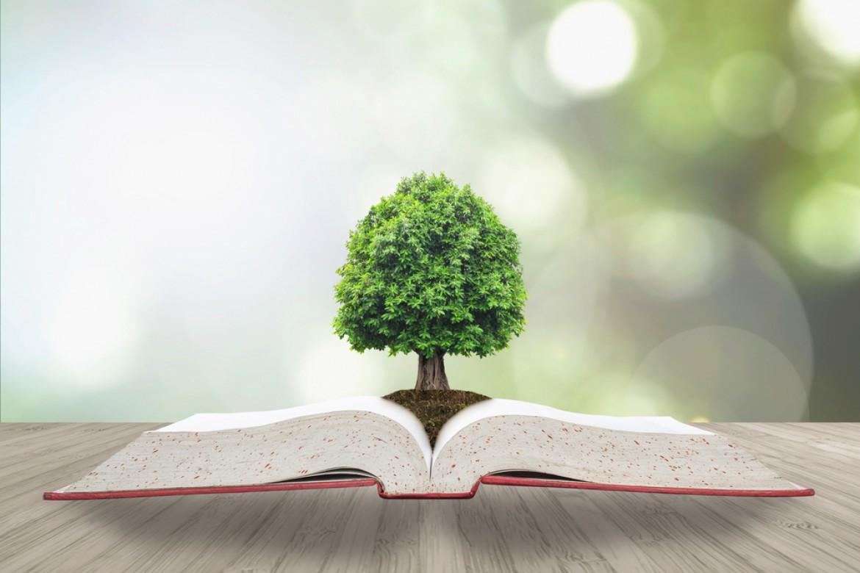 Bnp Paribas Am e il suo impegno nella ricerca sulla sostenibilità